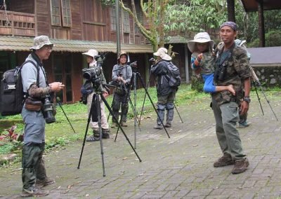 indonesia-birdwatching-photography-4